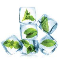 MENTHOL LIQUID - aroma TPA 15ml